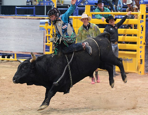NFR Live Stream Bull Riding