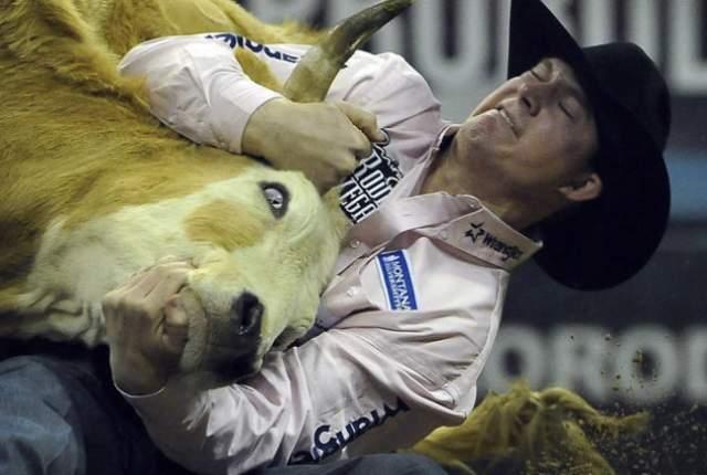 NFR Live Stream  Steer wrestling
